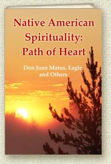 Book The Teachings of Don Juan Matus